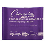 20 LB RESISTANCE THERAPY & EXERCISE FLAT BAND PURPLE